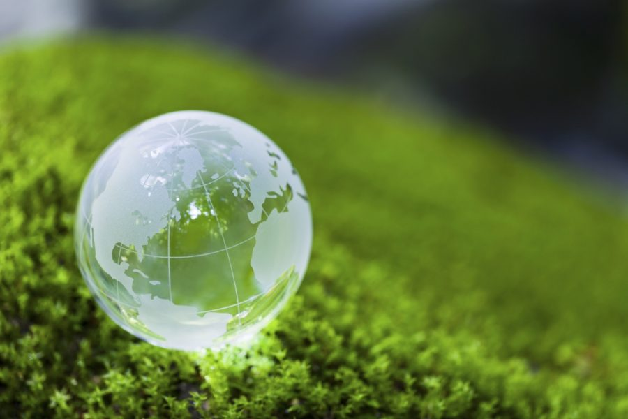 Sustainability— A Reality America Needs To Accept