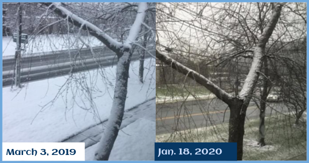 A difference of snowfall within a year